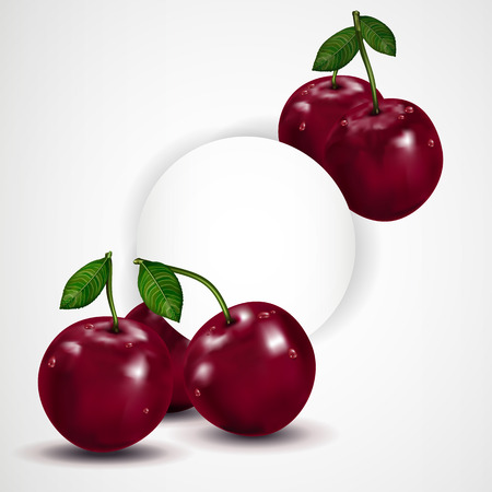 wet leaf: Bright berries ripe cherry with drops, isolated on white. Vector illustration.