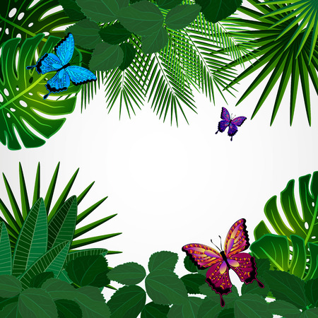fern leaf: Tropical leaves with butterflies. Floral design background. Illustration