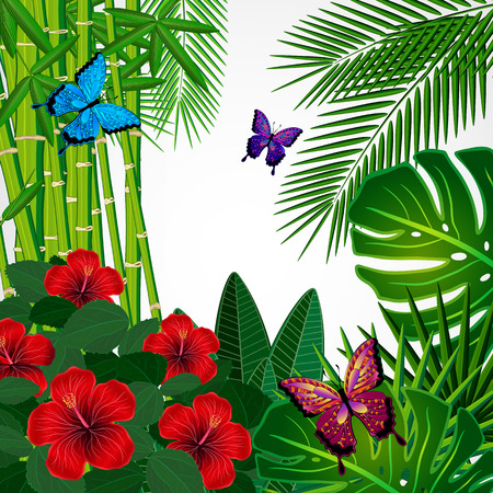 butterfly background: Tropical floral design background with butterflies.