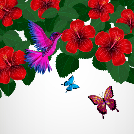Floral design background. Hibiscus flowers with bird, butterflies.