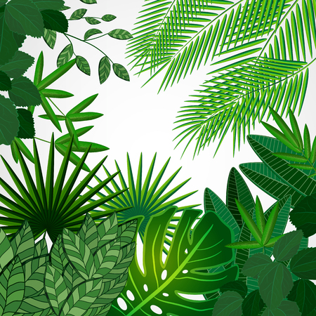 lush foliage: Frame made of leaves on a white background. Jungle tropical floral border.
