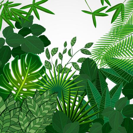 Frame made of leaves on a white background. Jungle tropical floral vector border. Ilustração