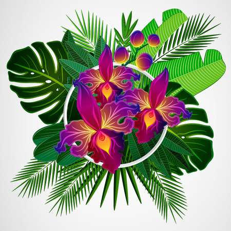 Tropical leaves with orchid flowers and white frame on isolate background.