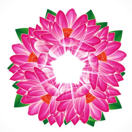 Water lily flower background.