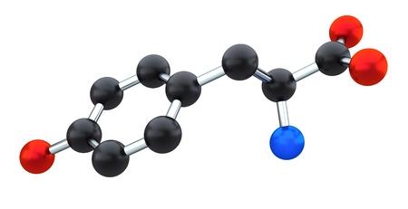tyr: tyrosine