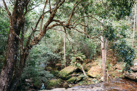 kradueng: Waterfall at Phu Kradueng in Thailand