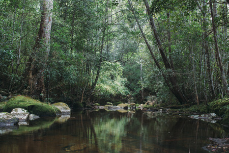 water sources: Natural water sources Phu Kradueng national park Thailand