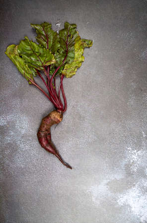 Deformed ugly beetroot with a bizarre shape on a gray background. A place for a copy of space. Vertical orientation 免版税图像