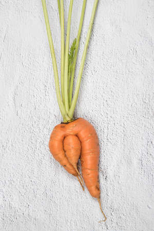 Ugly root vegetable is carrots. Vertical orientation