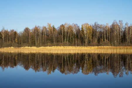 Autumn forest with leafless leaves is reflected in the water of the lake. The concept of a private holiday. Photophone