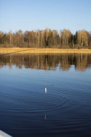 Fishing rod thrown into the water, diverge circles on the water. The concept of a private holiday. Vertical orientation