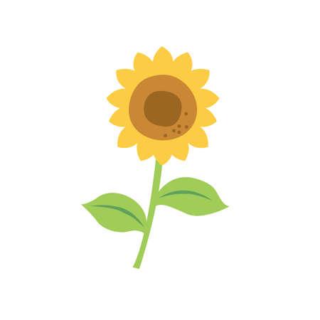 Illustration of summer sunflowers