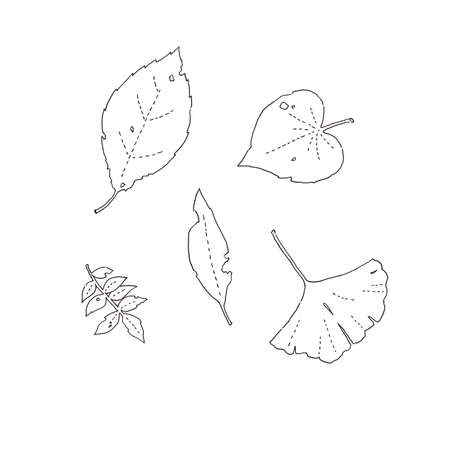 Fallen leaves of line painting