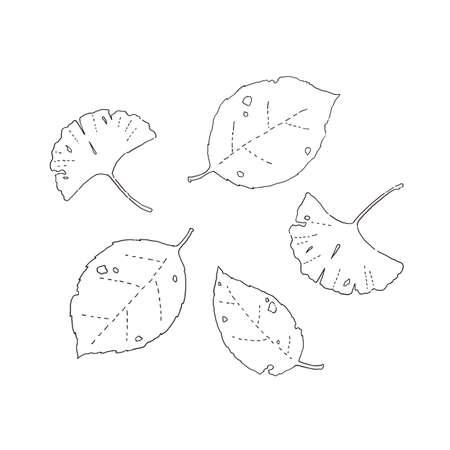 Set of fallen leaves of line drawing Reklamní fotografie