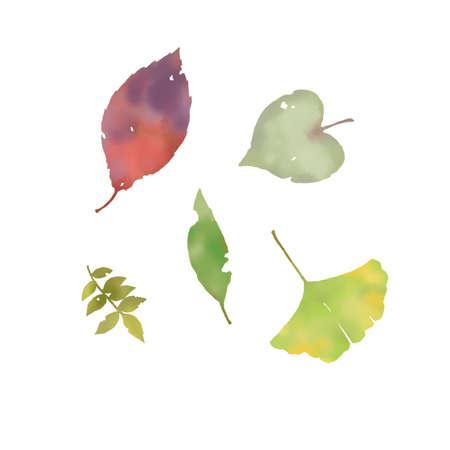 Watercolor fallen leaves set Reklamní fotografie