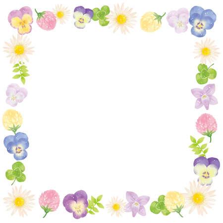 Margaret, Violet and Shirotsumexa Frame Material