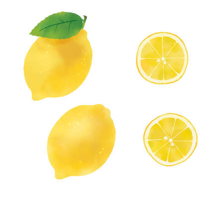 Fruit illustration of watercolor touch, illustration of lemon  Reklamní fotografie