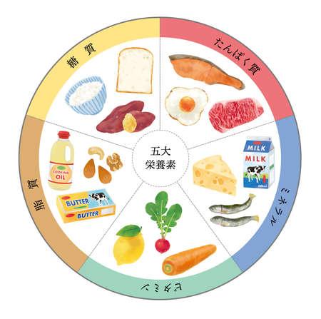 Fashionable vector illustration of five major nutrients Vecteurs