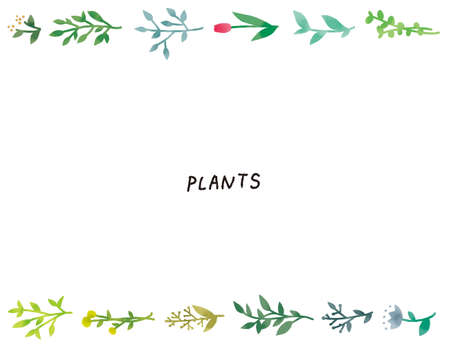 Casual Touch Simple and Natural Botanical Plant Illustration Set