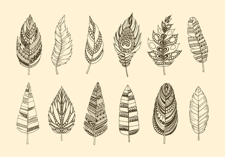 hand pen: Set of ethnic feathers. Collection of vintage tribal ethnic hand drawn feathers. Illustration