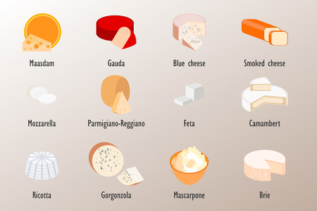 brie: Collection of delicious cheese style flat, vector illustration.