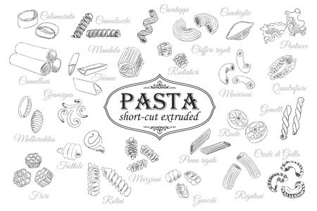 rotini: Vector illustration of hand drawn pasta set. Illustration