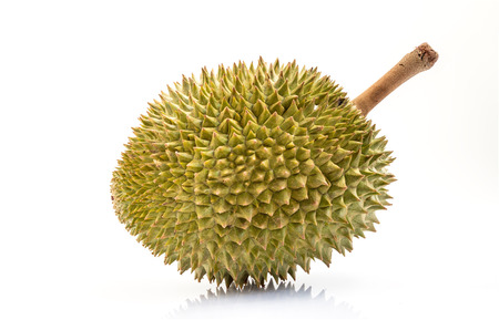 Durian isolated on white background 스톡 콘텐츠