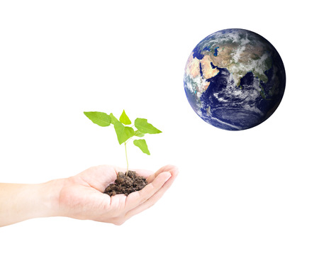 conservationist: Human hand holding global in soil with little green tree for EARTH CARE on world environment day