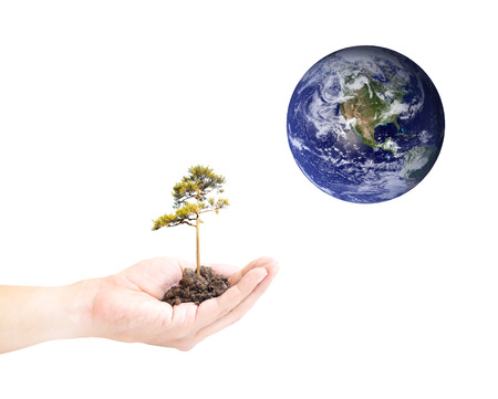 conservationist: Human hand holding global in soil with green tree for EARTH CARE on world environment day  Stock Photo