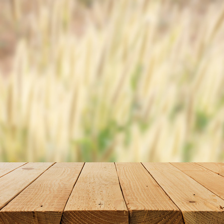 relax garden: Defocus and blur image of terrace wood and relax garden for background