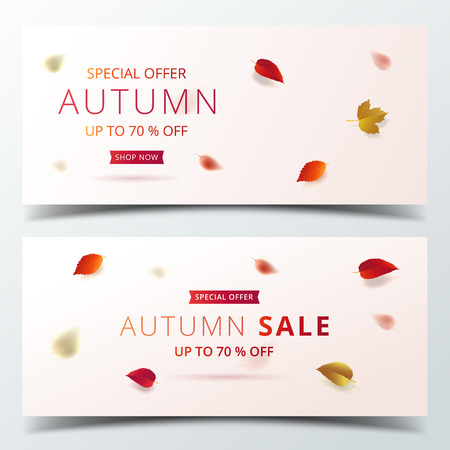 Autumn sale banner layout template in luxury design decorate with maple and realistic leaves on bright background for shopping sale or promotion poster, leaflet and web banner. Vector illustration .