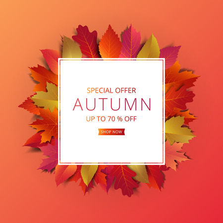 Autumn sale banner layout template decorate with maple and realistic leaves in warm color tone for shopping sale or promotion poster, leaflet and web banner. Vector illustration.   Illustration
