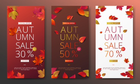 Autumn sale banner layout template decorate with maple and realistic leaves in warm color tone for shopping sale or promotion poster, leaflet and web banner. Vector illustration.