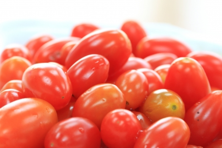 Close Up of tomatoes on white background. photo