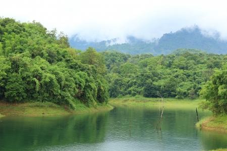 blue mountains tree frog: Dam Mountainside View, Kanchanaburi in Thailand  Stock Photo