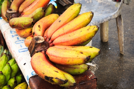 Red Nino Bananas  Banco de Imagens