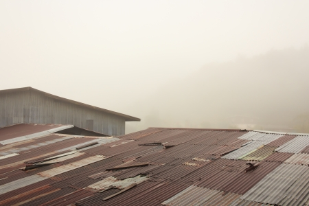 Rusty Tin Roof with Fog  photo