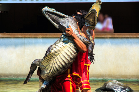 Show of Crocodile  photo
