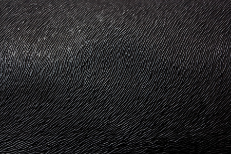 seamless leather: Black Leather Texture Background