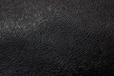 Schwarzes Leder Textur Hintergrund Standard-Bild