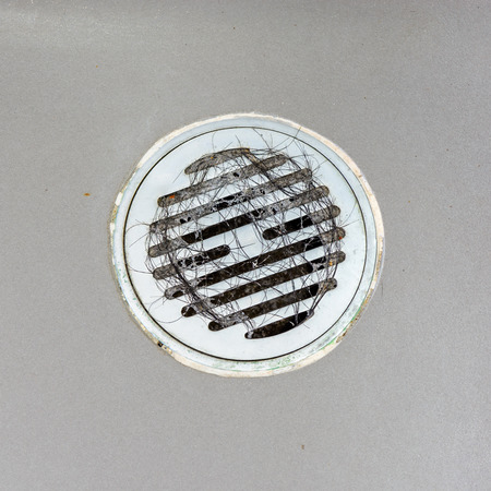 sink drain: Hair clump in bath drain.