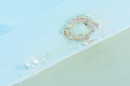 plaster mould: Water leak in bathroom ceiling.