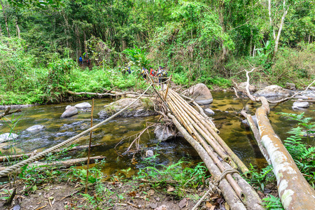rill: Bamboo bridge over rill in national park forest. Stock Photo