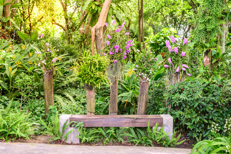 Wooden bench among the beautiful orchid garden. Stock Photo