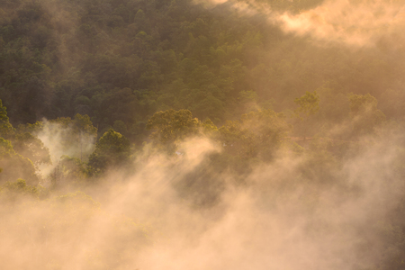 dao: Morning mist with mountain at sunrise in Chiang Dao National Park ,Chiang Mai, Thailand.