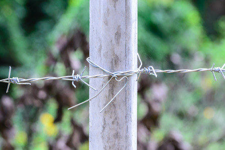 cement pole: Metal barb fence with cement pole for protect danger area.