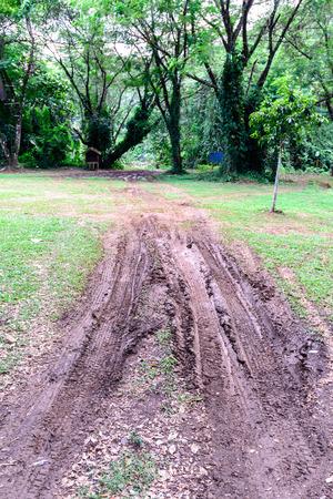 mire: Wheel tracks in mire. Stock Photo