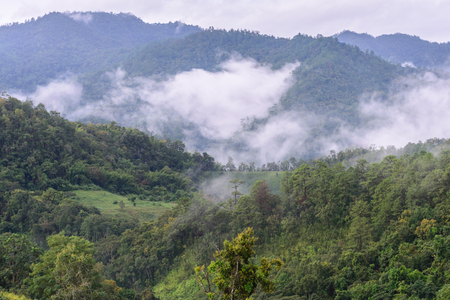 doi: Morning mist with mountain in Chiang Dao National Park ,Chiang Mai, Thailand.