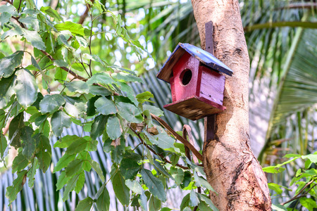 birdhouse: Colorful birdhouse on the tree.