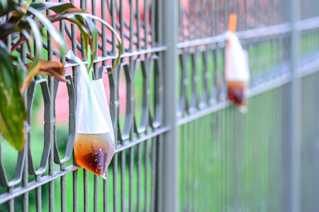 sully: Platic garbage, plastic bag used for sparkling water was left on fence in city. Stock Photo